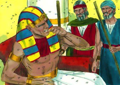 The Fourth Plague – Flies – Exodus 8:20-32