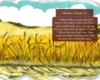 Slide05-Matthew 13-1-23 Parable of the Sower _ Pnc bible reading