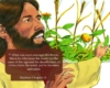Slide15-Matthew 13-1-23 Parable of the Sower _ Pnc bible reading