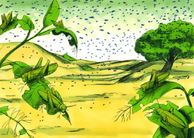 The Eight Plague – Locusts (Exodus 10:1-20)