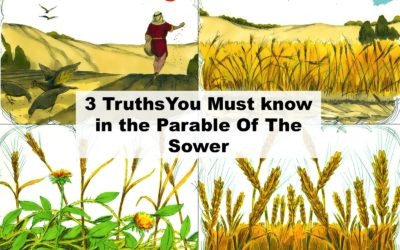3 Truths You Must Know In The Parable Of The Sower